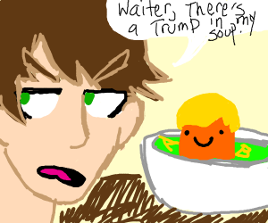 Waiter, there's a Donald Trump in my soup