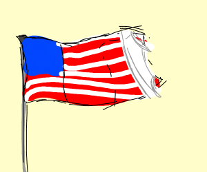 underwear on the american flag (WHY?)