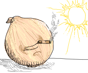 Onion smokes on a sunny day