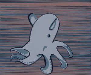 Deep-sea Dumbo Octopus