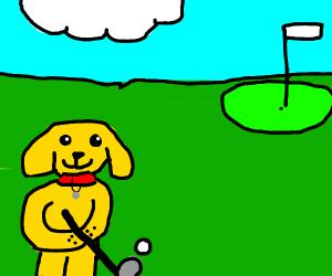 Pet Golf Course