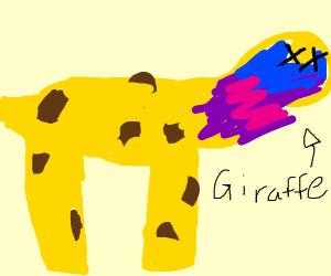 giraffe having asthma attack
