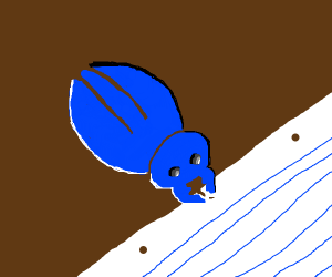 beetle eats yummy paper