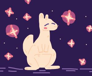 Kangaroo on purple background
