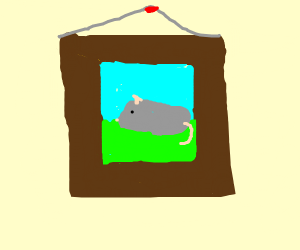 A framed photo of your pet mouse.