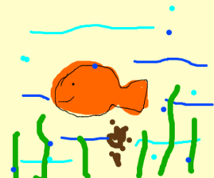 Pooping fish