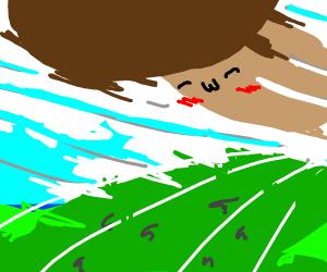 giant flying blushing mushroom