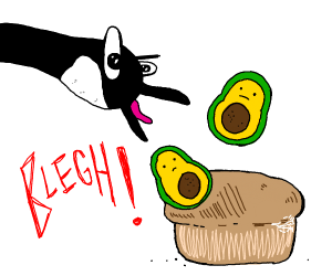 A goose puking up avocados on bread