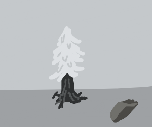 lonely spruce