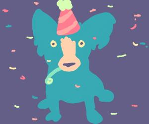 Blue dog celebrating its birthday