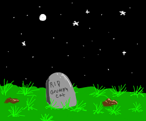 Grumpy Cat's grave