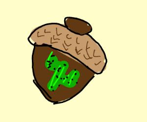Cactus in an acorn