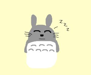 totoro sleeping