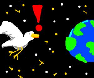 Bird discovering Earth