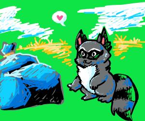 racoon loves their trash
