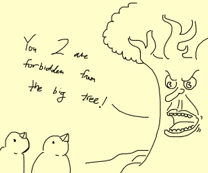 the birds are forbidden in the big tree