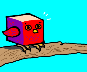 Uncomfortable cube shaped bird