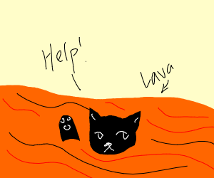 Black cat about to drown in lava