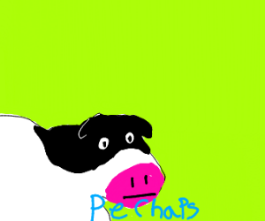 Perhaps cow meme