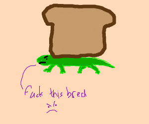 small green lizard is mad at the bread on him