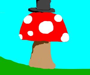Mushroom wearing a Hat