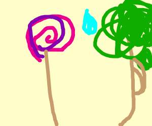 Lollipop confesses to a tree