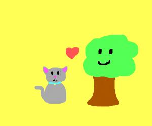 Cat x tree my new otp lol