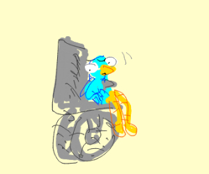 bird in a wheelchair is scared