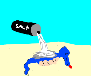 A very salty old seahorse