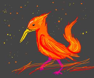 This Bird is on FI-RE! She's walkin on fire!