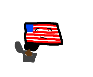America flag pooping