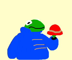 kermit with a paddington jacket