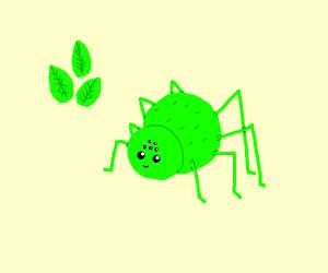 Mint Spider
