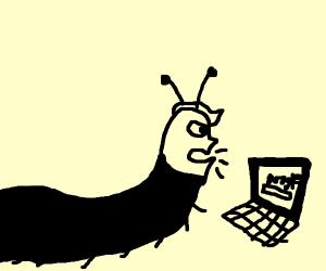 Donald Trump slug hybrid searching the web
