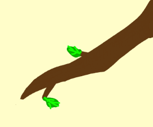 Branch with 2 leaves