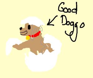 good doggo comes out of egg