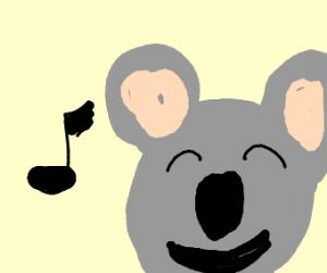 Koala singing