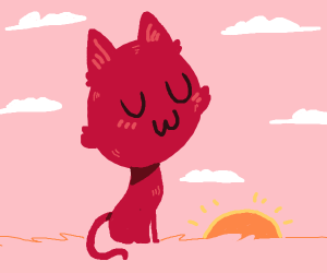 Cat in front of a sunset