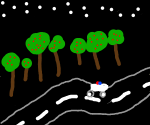 Police driving through a dark forest