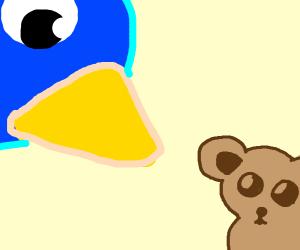 bird attacking scared little bear