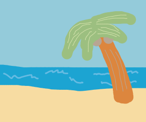 a beach with a palm tree