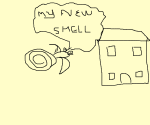 Hermit-snail uses house as new shell
