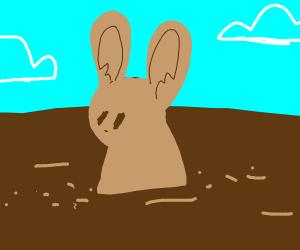 Dirt rabbit