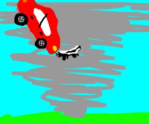 Skunk caught in a tornado