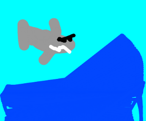 Shark doing cool surfing at wave