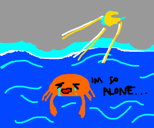 Lonely crustacean lost at sea