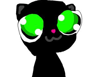 black cat with BIG eyes