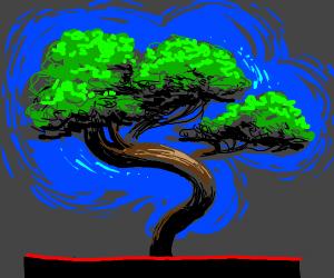 banzai tree