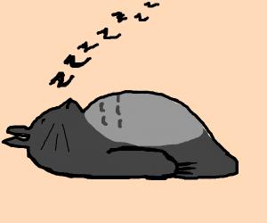Totoro In Deep Slumber