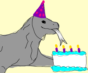 komodo dragon has a birthday